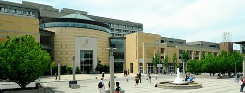 York University®