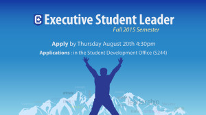 Executive Leadership Opportunities